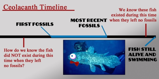 ceolacanth fossil timeline copy